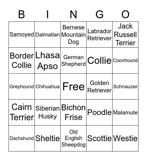 WAYZATA  WOOFSTOCK Bingo Card