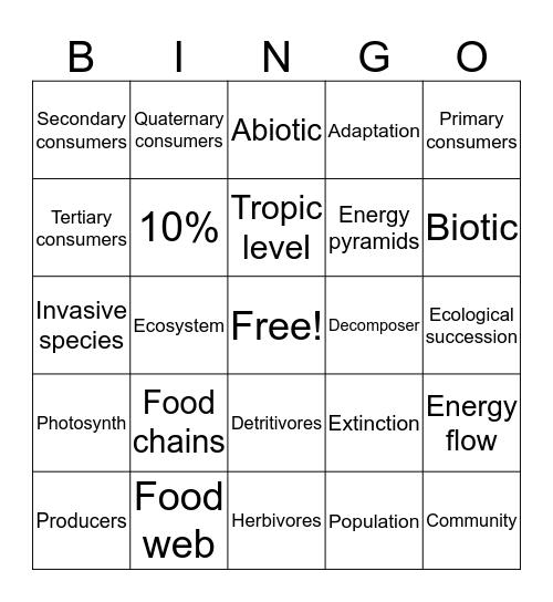 Food chains&webs Bingo Card