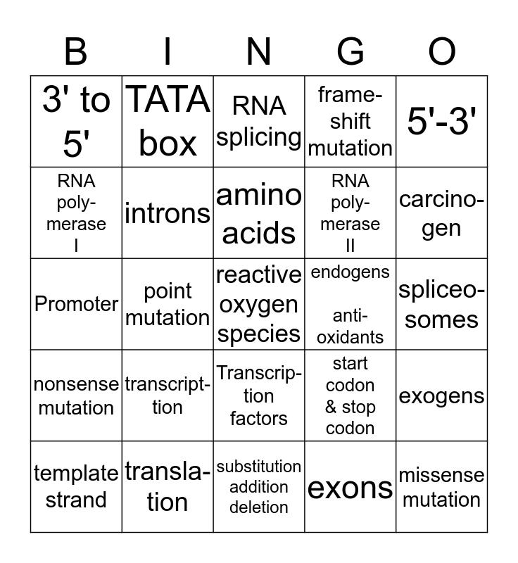 AP BIO CH 14 PROTEIN SYNTHESIS Bingo Card