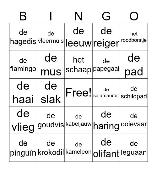 Het dierenrijk Bingo Card