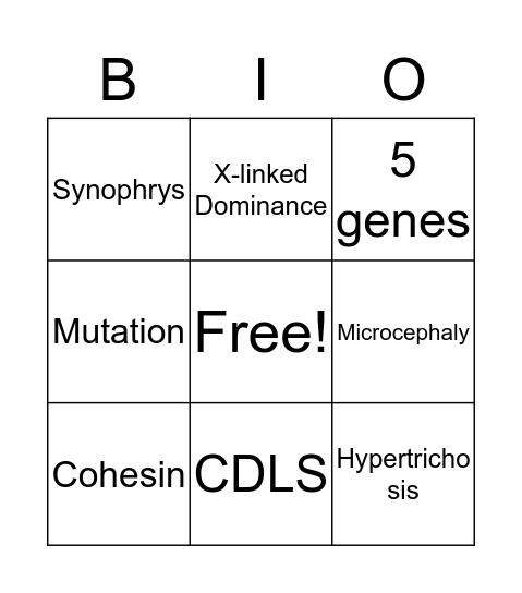 CDLS Bingo Card