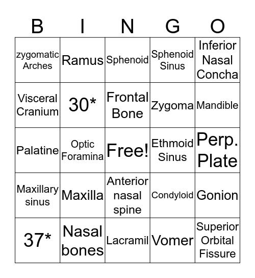 Facial Bones Bingo Card