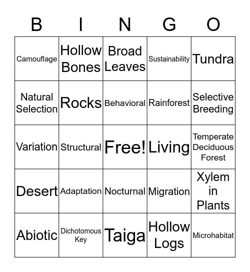 EOY Review Bingo # 3 Bingo Card