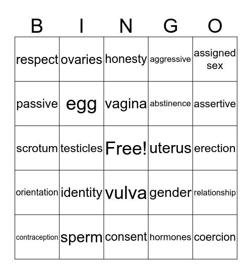 Reproductive Health Bingo Card