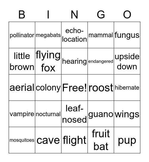 BATS! Bingo Card