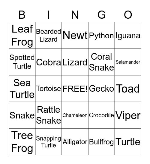 Reptile and Amphibian  Bingo Card
