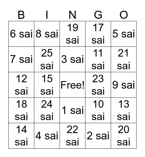 Nan sai desuka? How old are you?  Bingo Card