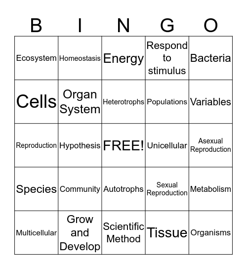 Biology Review  Bingo Card