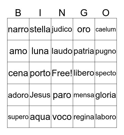 Prima Latina Lessons 1-7 Bingo Card