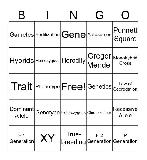 Genetics Vocabulary Bingo Card