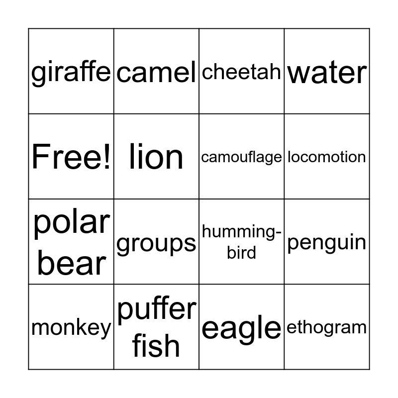 Animal Behavior Bingo Card