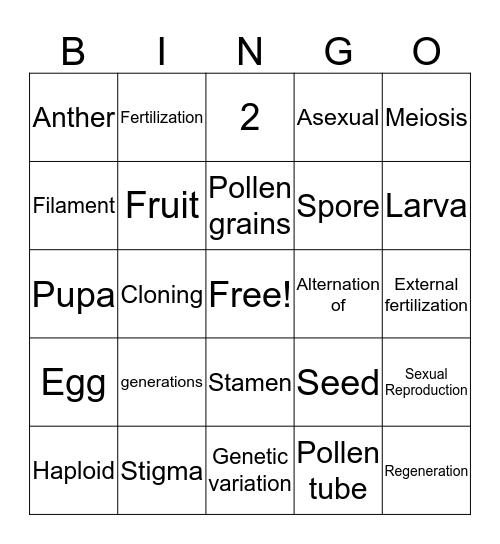 REPRODUCTION Bingo Card
