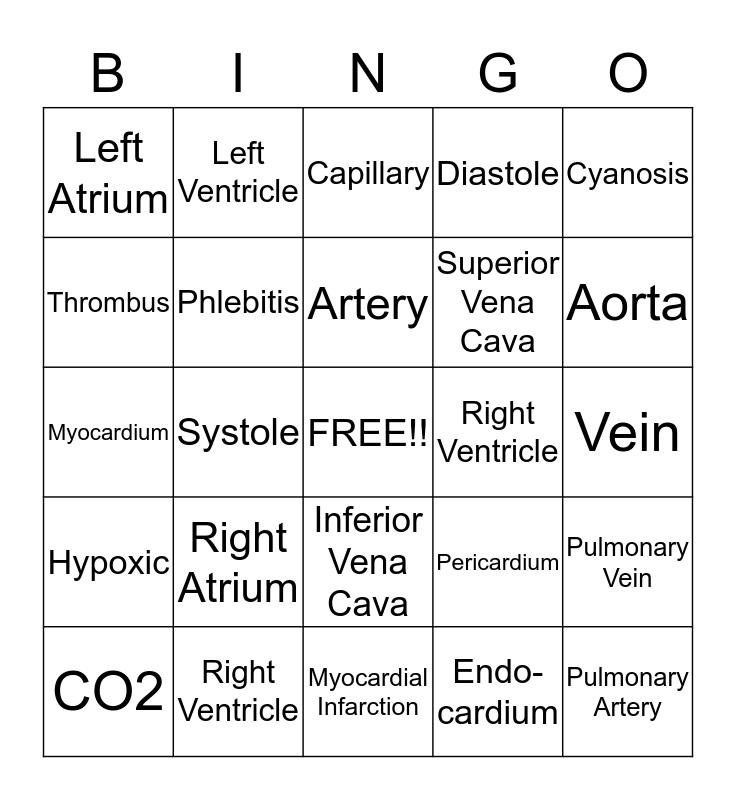 Cardiovascular system Bingo Card