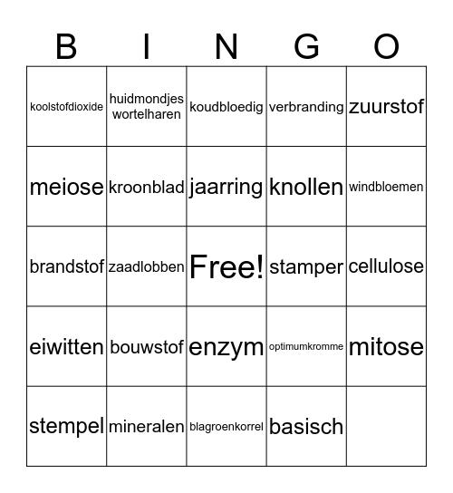 Biologie mavo 4 Bingo Card
