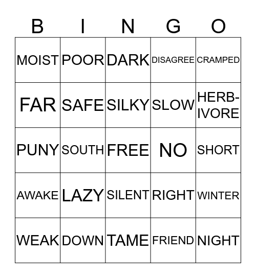 ANTONYMS Bingo Card