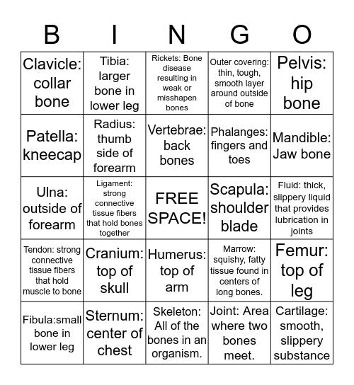 Skeletal System Bingo Card