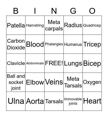 Health  Bingo Card