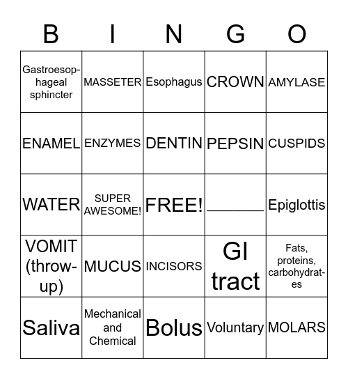 DIGESTION Bingo Card