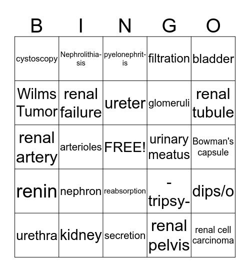 The Urinary System Bingo Card