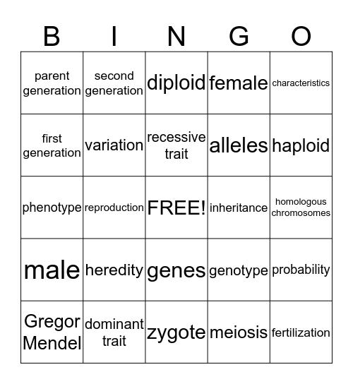 Chapter 6 - Heredity Bingo Card
