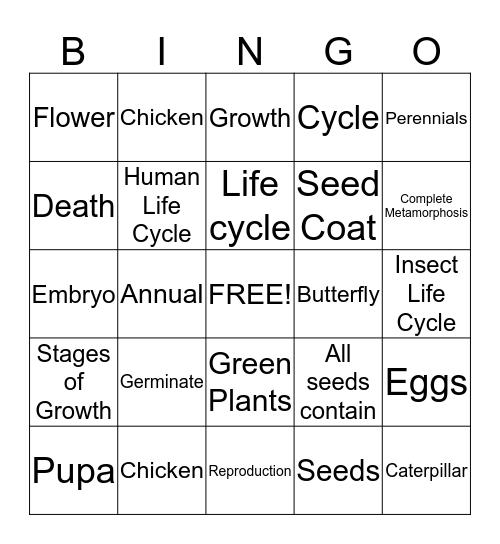Life Cycle BINGO Card