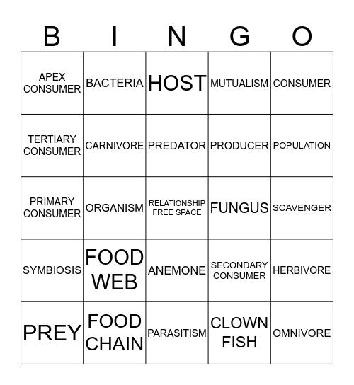 RELATIONSHIP Bingo Card
