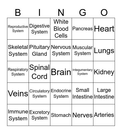 Body System Bingo Card