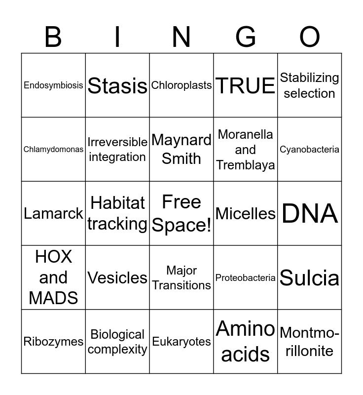 Major Transitions Bingo Card