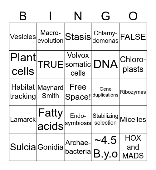 Major Transitions Bingo Card