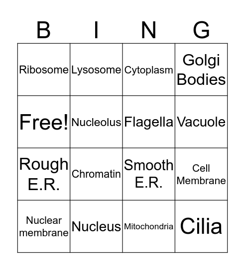 Animal Cell Bingo Card