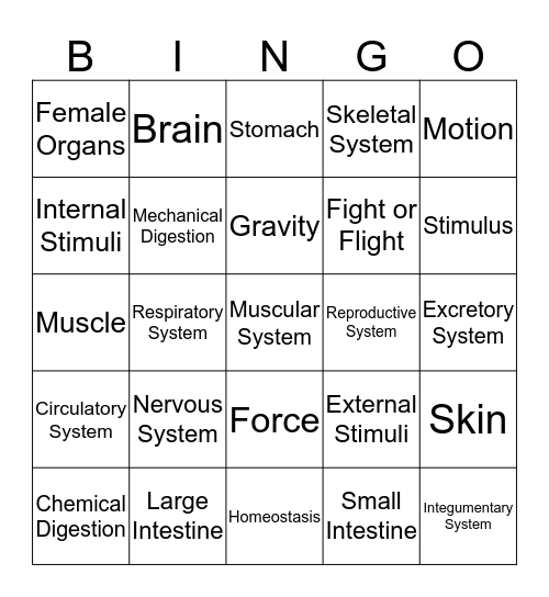 Body Systems Bingo Card