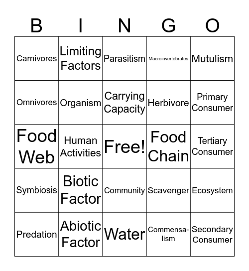 Learning Set 3 Review Bingo Card