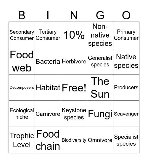 Ecosystem Dynamics Bingo Card