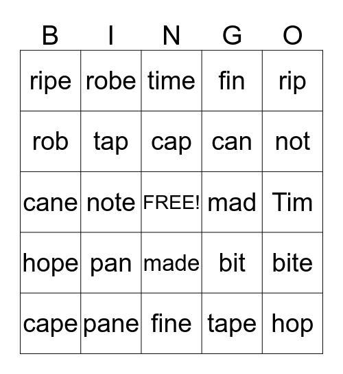 Silent e Bingo Card
