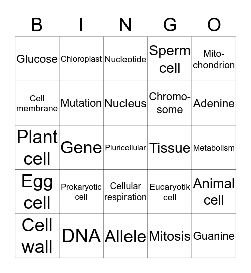 Cell vocabulary Bingo Card