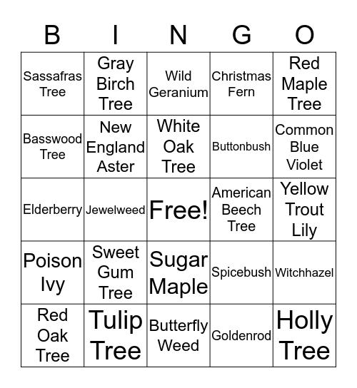 Native Plants Bingo! Bingo Card