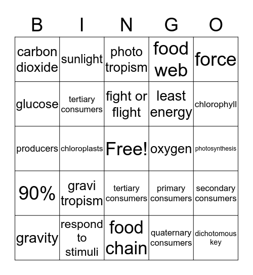 4th 6 weeks Bingo Card