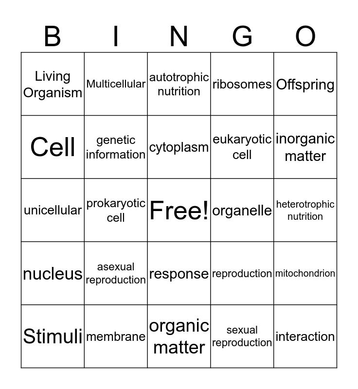 Life Bingo Card