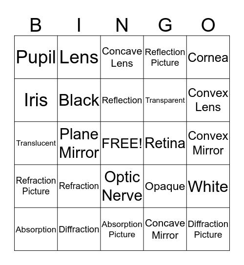 Human Eye and Light Bingo Card