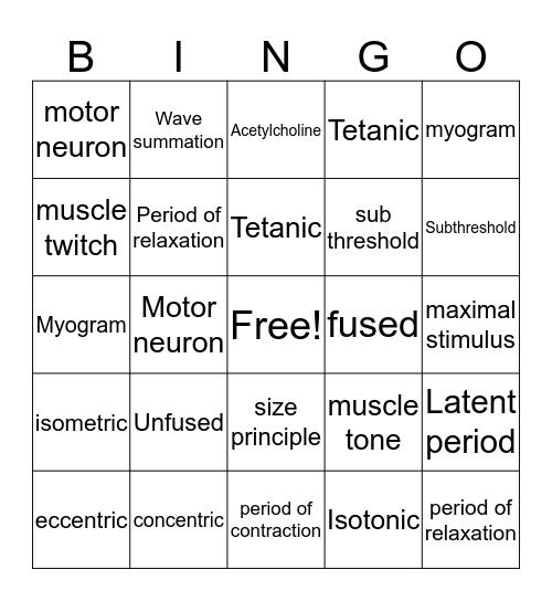Muscular System Bingo Card