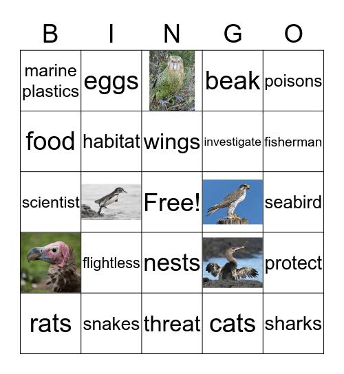 Uncle Dan's Bingo Game! Bingo Card