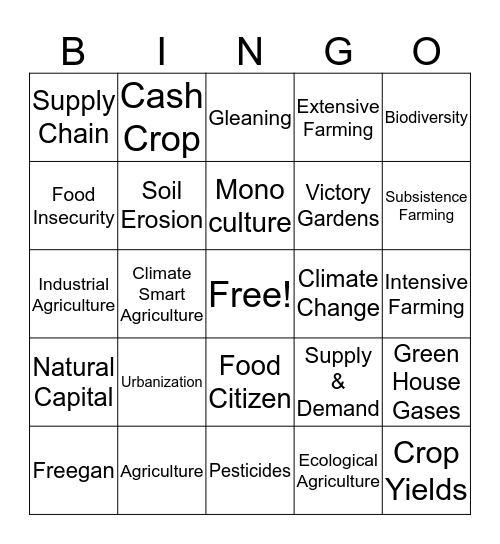 Geography Bingo Card  Bingo Card