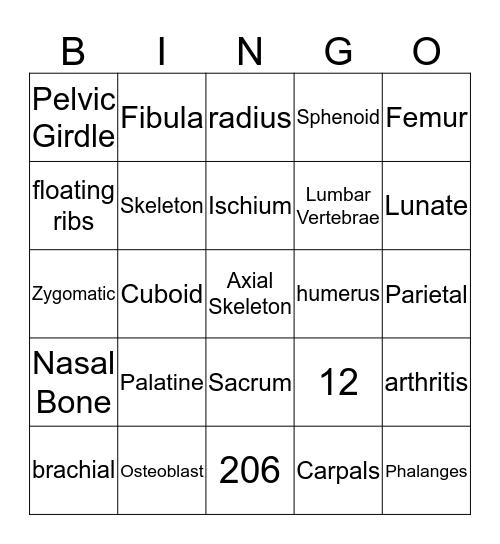 The Skeletal System Bingo Card
