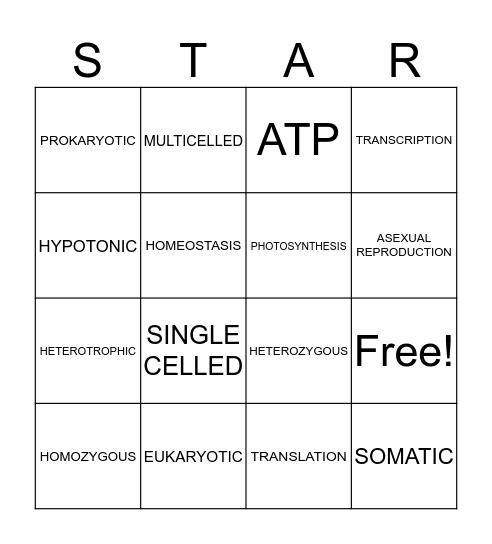 Bio Bingo Card