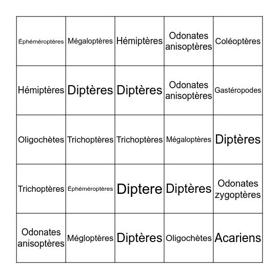 Taxo bingo du ruisseau Bingo Card