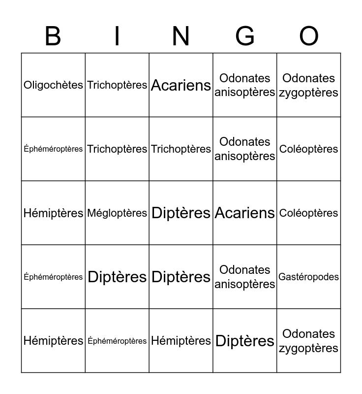 Taxo bingo du ruisseau de la mine abandonnée Bingo Card