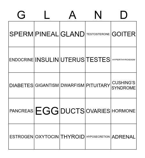 ENDOCRINE SYSTEM BINGO  Bingo Card