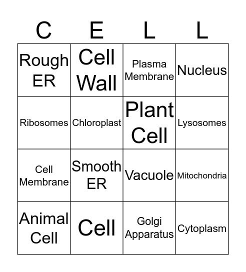 Cell Parts Bingo Card