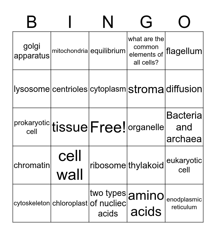 Cell Structure and Function Bingo Card