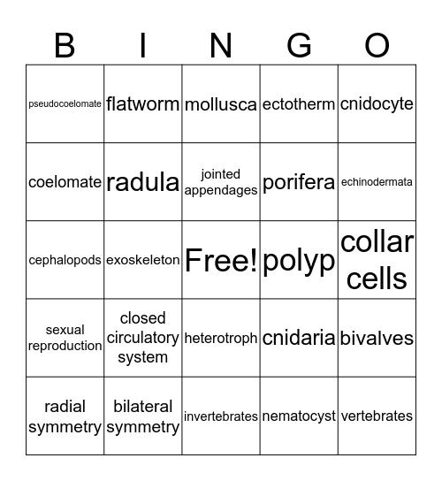 Unit 13-16 Bingo Card